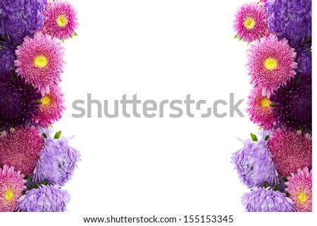 Summer flowers background isolated on white  - stock photo