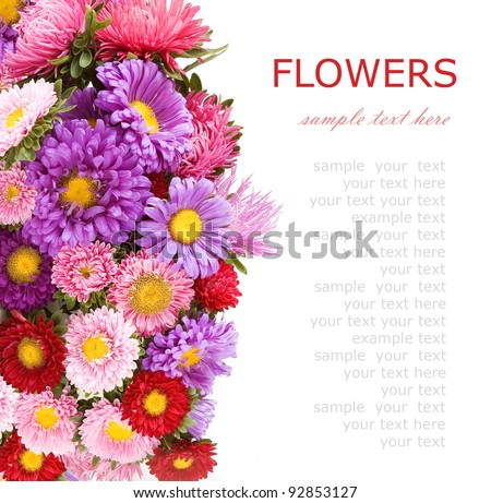 Summer flowers background isolated on white with sample text