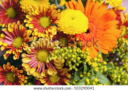 summer flowers bouquet in a vase, close-up - stock photo