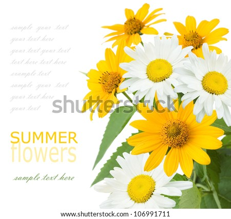 Summer flowers bouquet isolated on white with sample text - stock photo