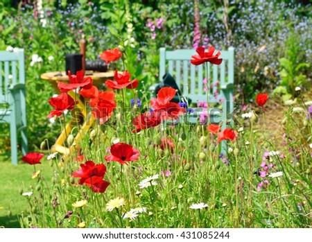 Summer Flowers In An English Cottage Garden
