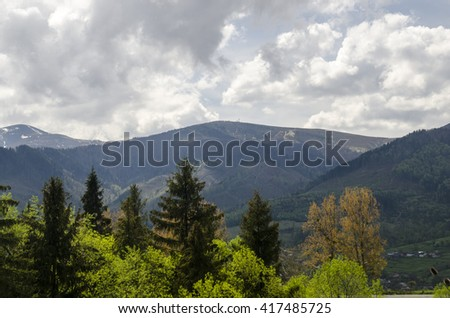 Summer forest and mountains. Environment protection and ecology issues. Save our forests! - stock photo