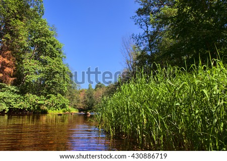 summer forest landscape with river in the foreground and green trees on the hill - stock photo