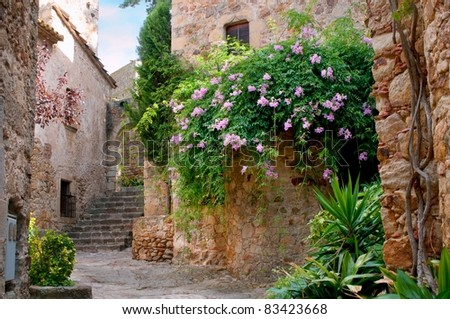 Summer garden in the medieval town of Peratallada, Spain - stock photo