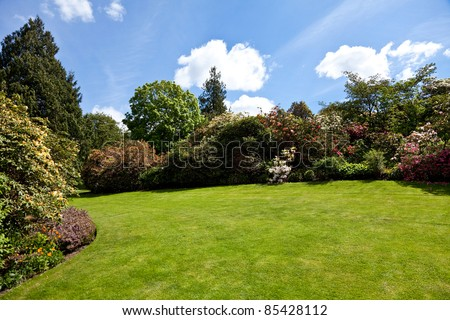 Summer garden, tree, flower and blue sky - stock photo