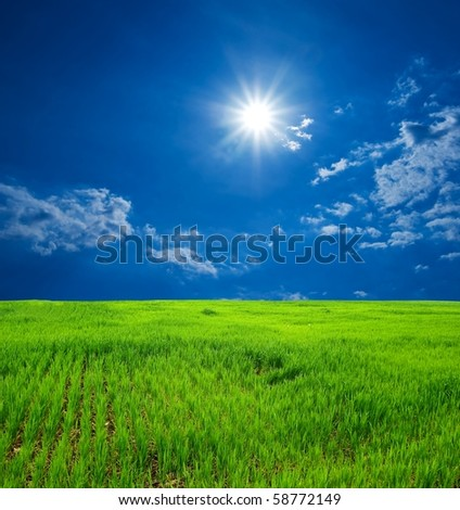 summer green field under a sparkle sun - stock photo