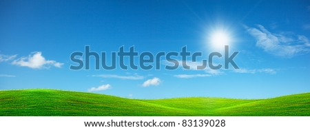 Summer green panoramic background in high resolution. - stock photo