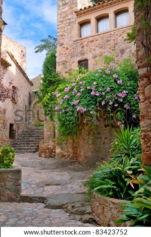 Summer green yard in medieval town, Peratallada, Spain - stock photo