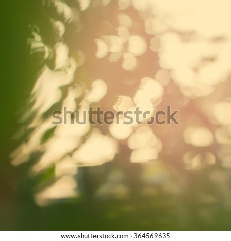 Summer greens in Natural Light Bokeh of Nature on Beige Background. Abstract toned effect - stock photo