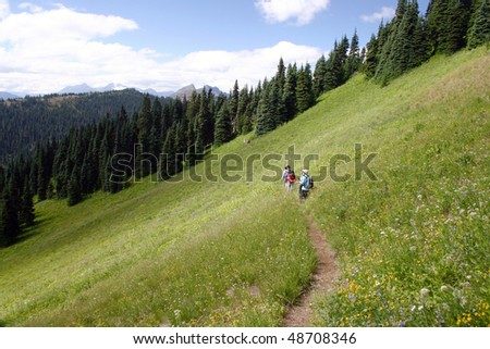Summer hiking in the meadow. - stock photo