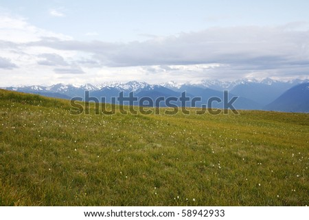 Summer hiking view of high mountain alpine meadow. - stock photo