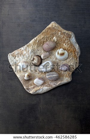 Summer holidays concept. Beach elements on wooden background