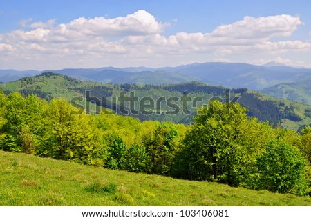 Summer in mountains - stock photo