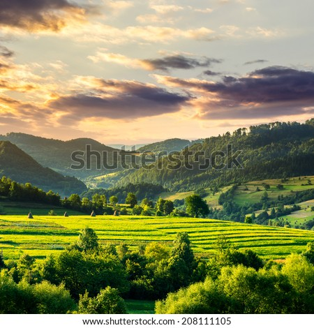 Summer land scape . Stack of hay on a green meadow in the mountains