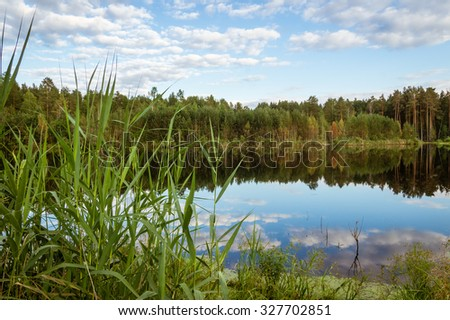 summer landscape at a pond with reflection in water, forest, Russia, the Urals - stock photo