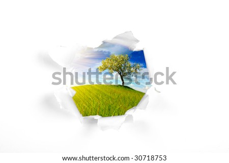 summer landscape behind wall hole - stock photo