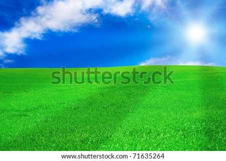 Summer landscape. Bright sun over green field at summer. - stock photo