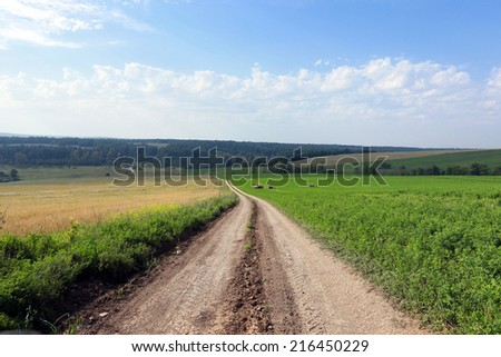 summer landscape dirt road among meadows and forests on a cloudy day