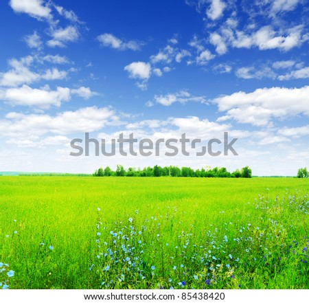 Summer landscape. Field and sky. - stock photo