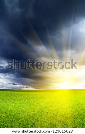 Summer landscape. Green bright field with thunderclouds. Dramatic lighting.