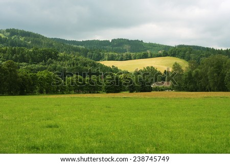 Summer landscape. Green grass and blue sky.  - stock photo