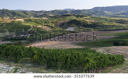 Summer landscape in Oltrepo Pavese (Pavia, Lombardy, Italy) at summer (August) with vineyards