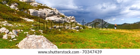 Summer landscape in the Crimea - stock photo