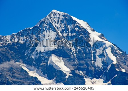 Summer landscape in the Jungfrau region - stock photo