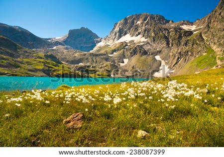 Summer landscape in the mountains - stock photo