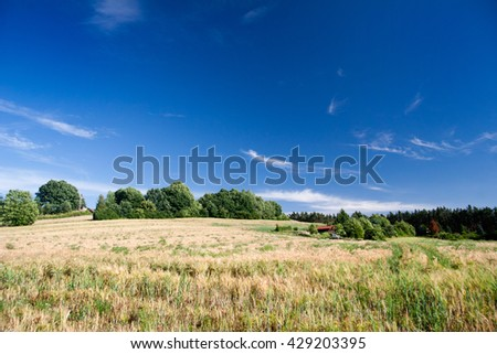 Summer Landscape in Thuringia with field and country house - stock photo