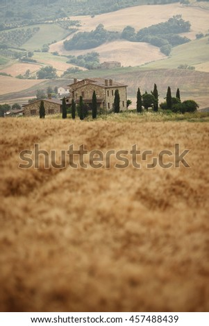 Summer landscape in Tuscany