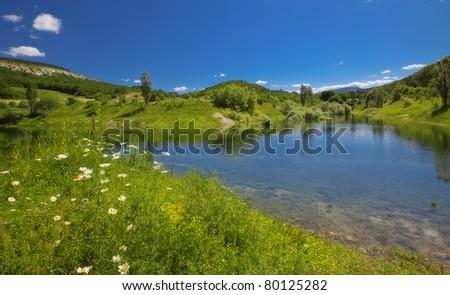 summer landscape - kind on a mountain lake - stock photo