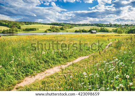 Summer landscape. Muranovo. Moscow region, Russia. - stock photo