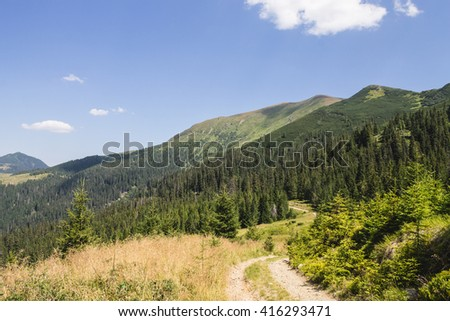 summer landscape of Marmarosy mountains range of Carpathian mountains on the Ukraine and Romania border - stock photo