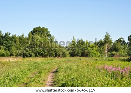 Summer landscape of the Central Russia, Moscow area - stock photo