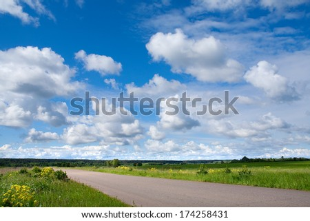 summer landscape of the road leading to the horizon in a field near the woods and beautiful clouds in the blue sky