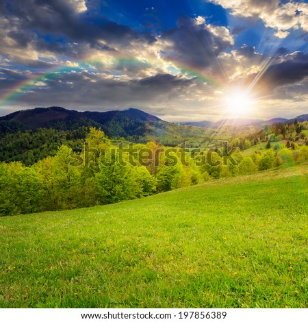 summer landscape. rainbow over the green grass on  hillside meadow. forest in fog on the mountain at sunset  in light flare