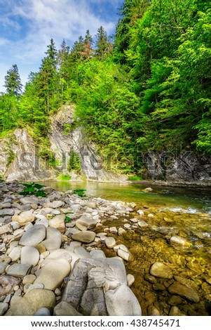 summer landscape. shore of mountain river with stones  and a spruce trees on the top of a cliff - stock photo