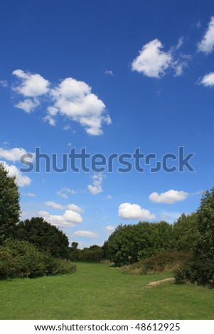 Summer landscape showing green vegetation and blue cloudy sky. - stock photo