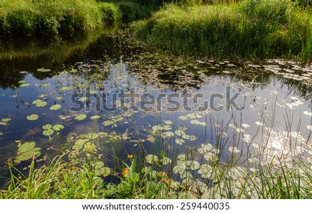Summer landscape tranquil river and sky reflected in the mirrored water - stock photo
