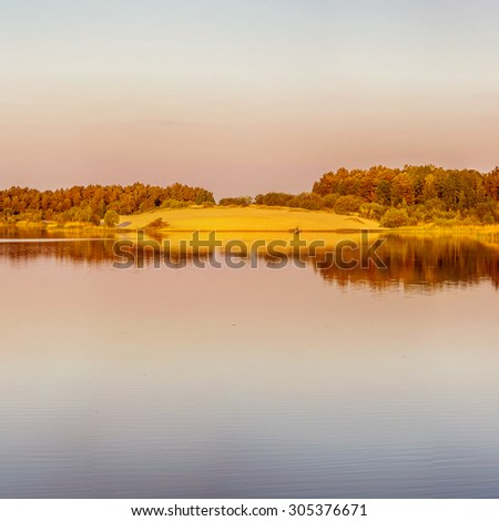 Summer landscape: tree on shore of lake on cloudy day.