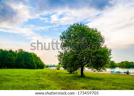 summer landscape tree river bench sky clouds - stock photo