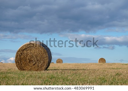 Summer landscape view of straw bales in stubble field on a background of blue sky and clouds