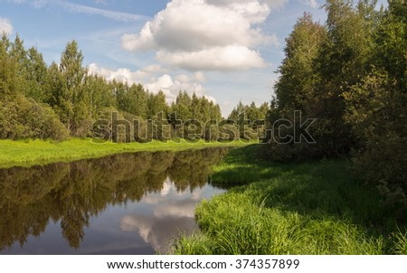 summer landscape with a small river in the forest - stock photo