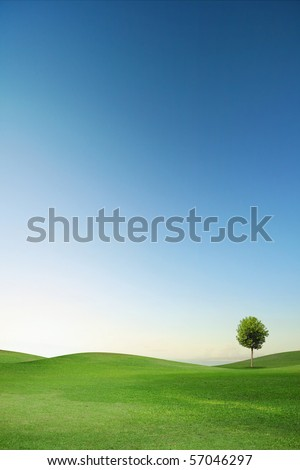 Summer landscape with blue sky, green grass and trees - stock photo