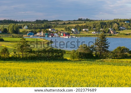 Summer landscape with canola fields and fishing  boats at French River in central Prince Edward Island, Canada - stock photo