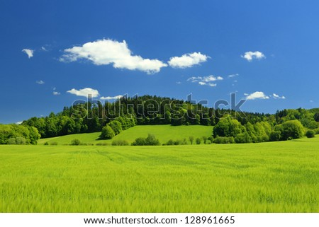 Summer landscape with clear blue sky and field in the foreground - stock photo