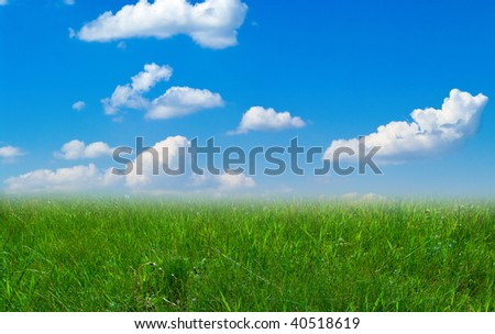 Summer landscape with cloudy sky and green grass