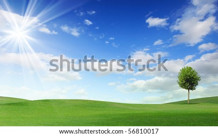 Summer landscape with cloudy sky, green grass and trees