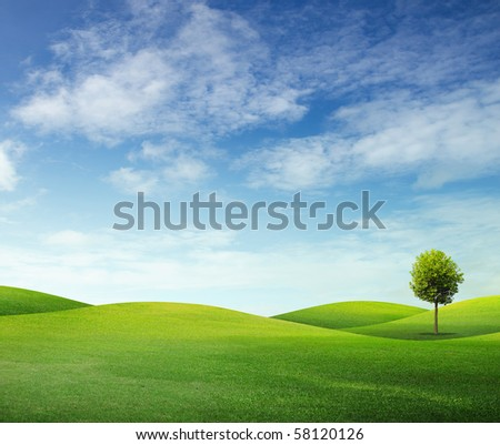 Summer landscape with cloudy sky, green grass and trees - stock photo